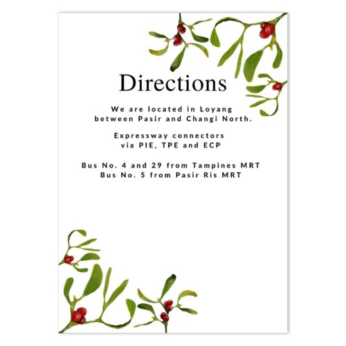 MIS-UND-INV-1 Under The Mistletoe Invitation